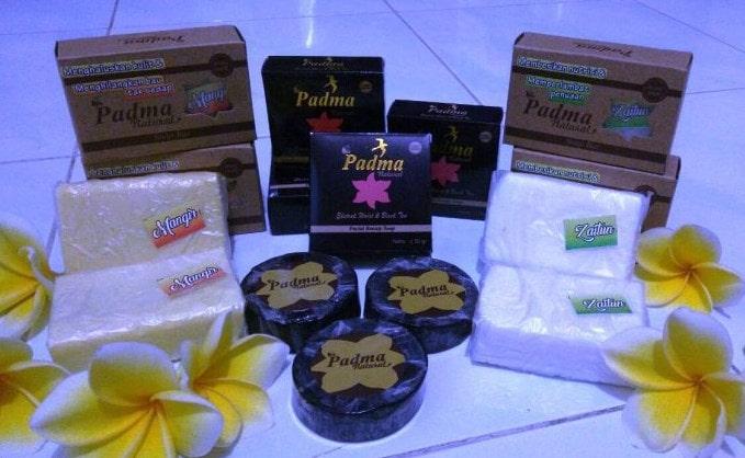 Padma Natural Membuat Sehat Tanpa Resiko