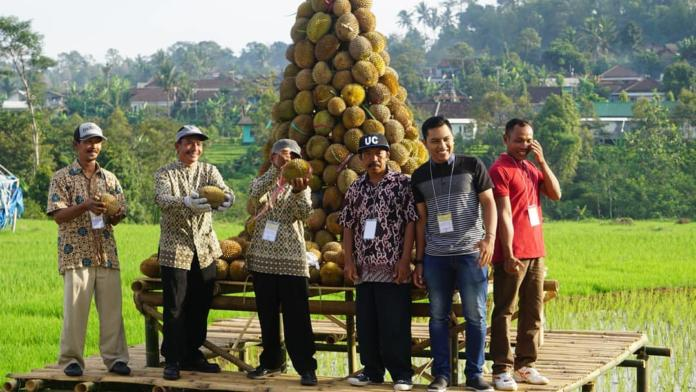 Nikmatnya Kesegaran Susu Medowo Dalam Festival Dhahar Durian