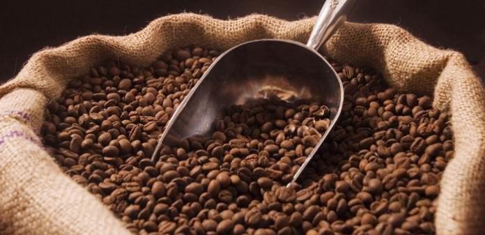 Kopi Sidikalang kopi terbaik Sumatera yang mendunia